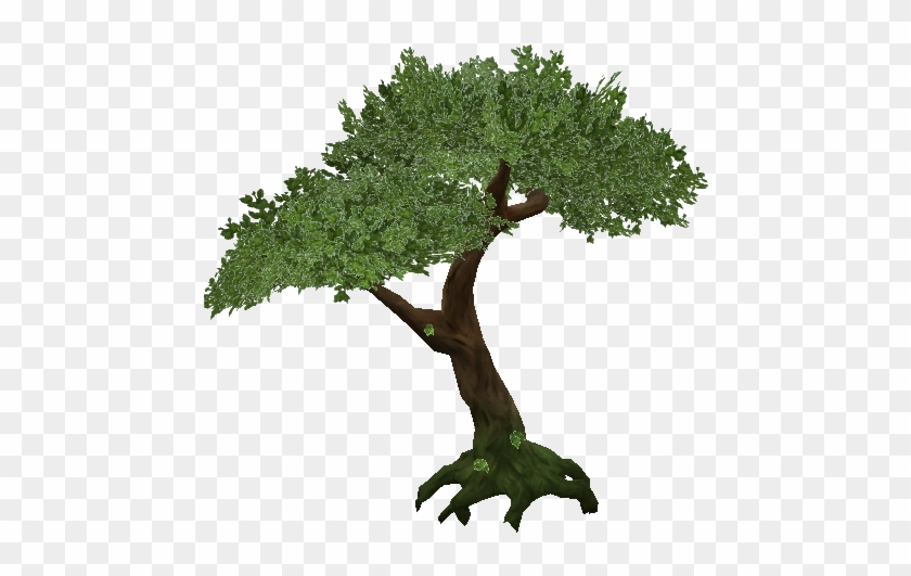 Jungle Tree Png Transparent - Jungle Tree Png #390583