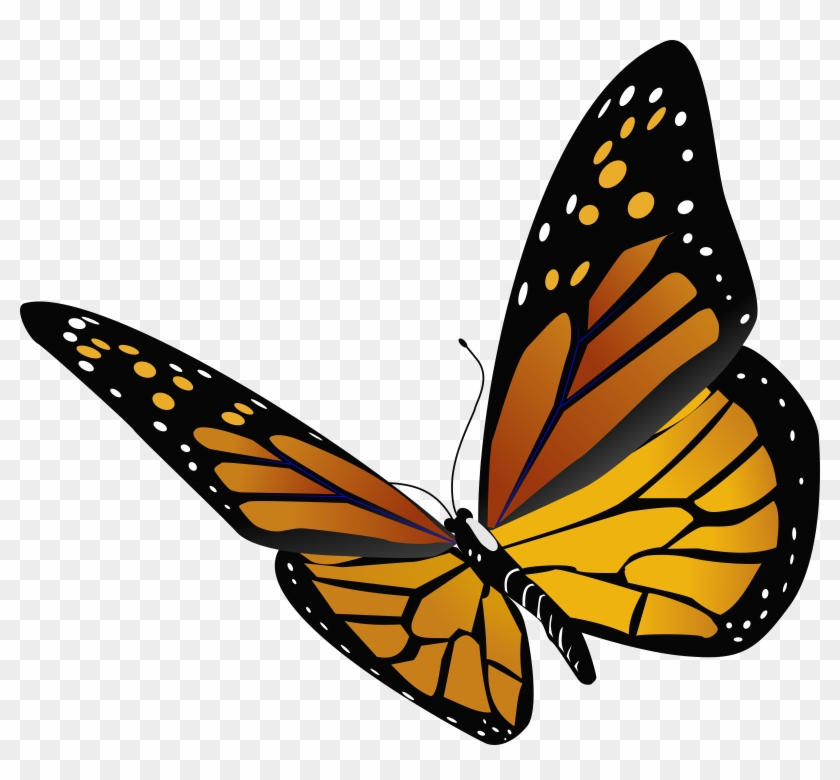 Monarch Butterfly Insect Clip Art - Close View Monarch Butterfly #390671
