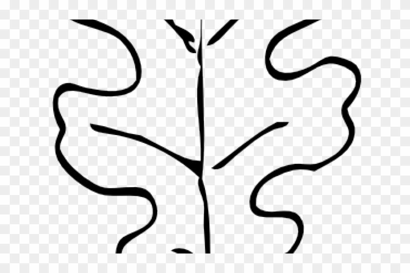 Oak Leaf Outline - Oak Leaf Outline #390805