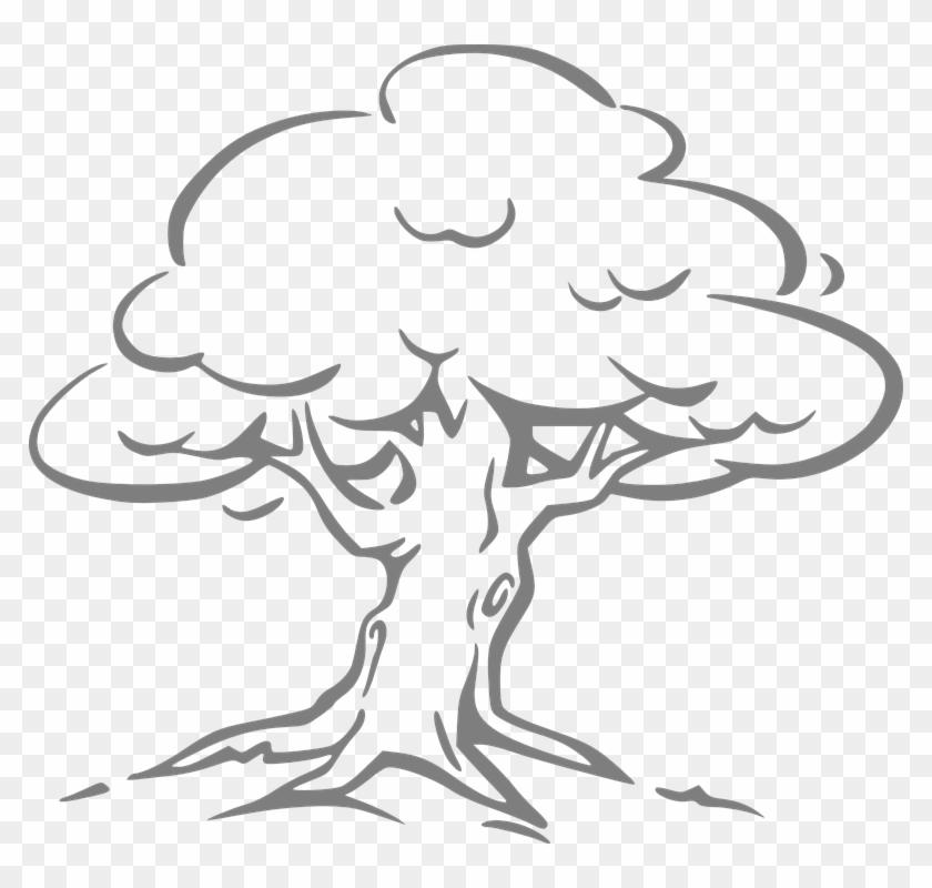 Oak Leaf Outline - Oak Tree Drawing Easy #390829