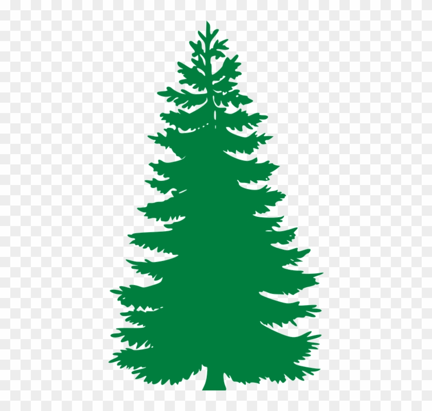 Free Vector Graphic - Pine Tree Silhouette #390928