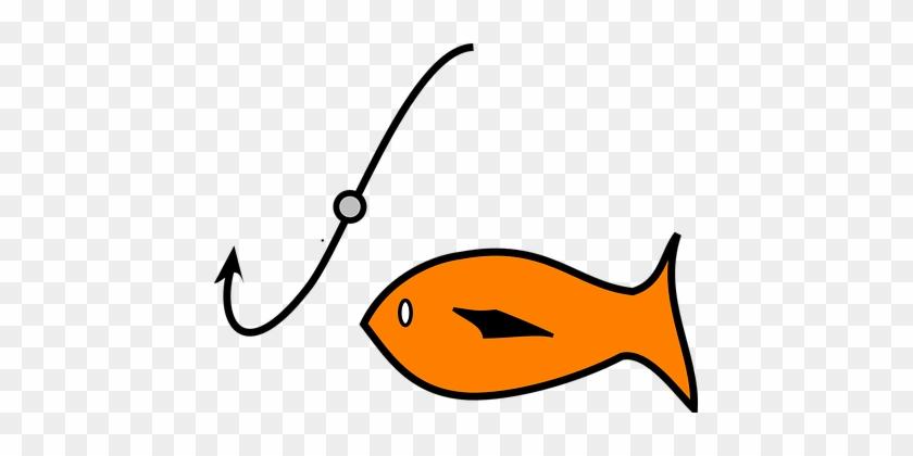 Fish, Fishing, Hook, Bait, Catch, Sport - Fish And Bait #392804