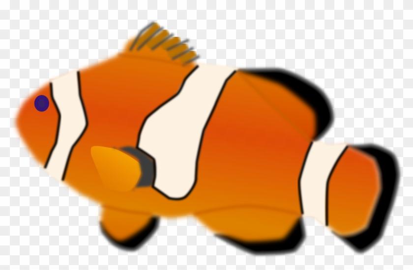 Aquarium Fish - Animated Clown Fish Gif #393192
