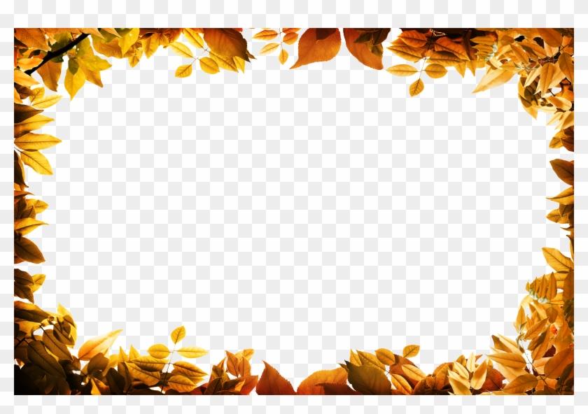 Film Frame Leaf Autumn Clip Art - Leaves Oarange Border Png #393391
