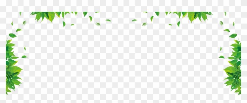 Leaf Graphic Design Green Floral Design Pattern - Green Leaves Border Design #393418