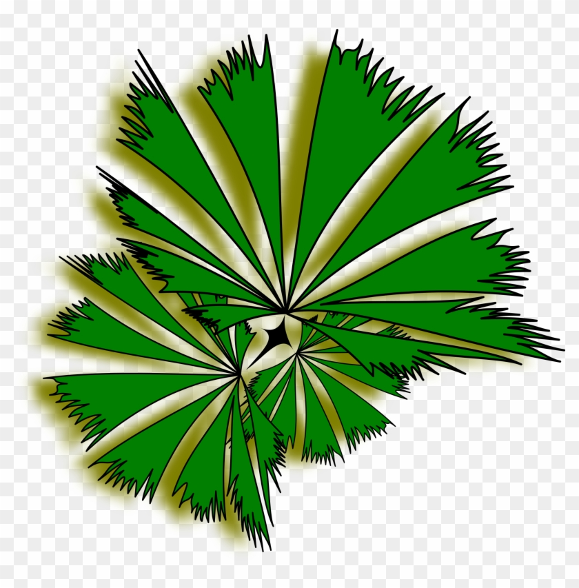 Palm Tree Clip Art Top View Clipart - Palm Tree Top View Clipart #396865