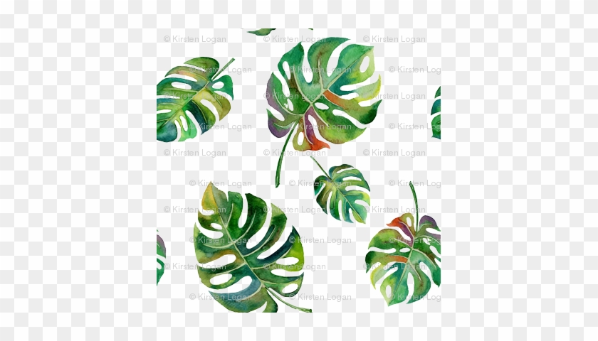 Tropical Island Palms Palm Leaves Watercolor - Water Color Leaves #396920