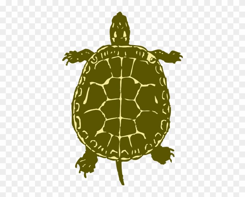 Turtle Clipart - Turtle Bird Eye View #397598