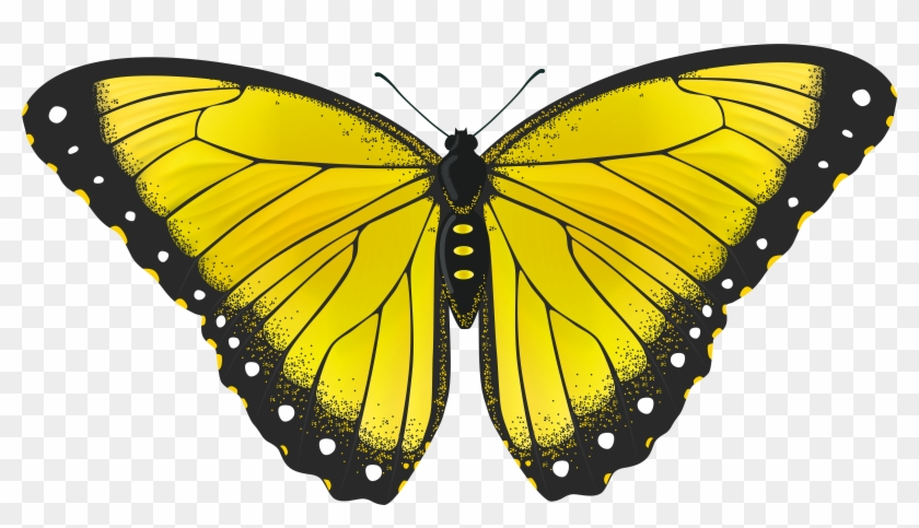 Yellow Butterfly Transparent Png Clip Art Image Png - Yellow Monarch Butterfly Png #398516