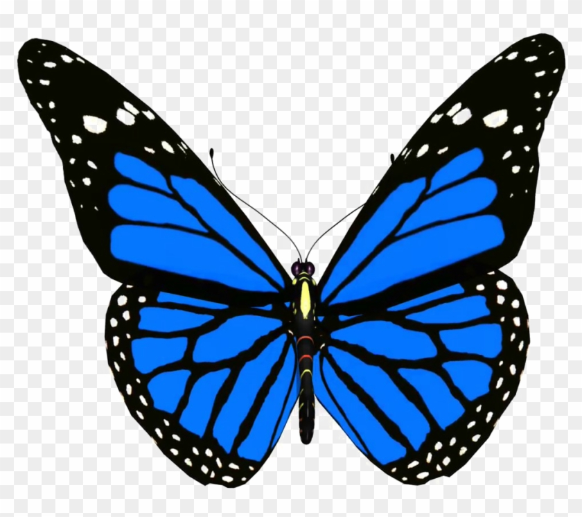 Blue Butterfly Png Pic - Animated Picture Of Butterfly #399064
