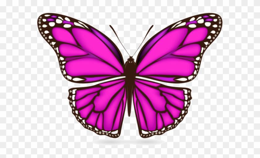 Butterflies Papillon Clipart Free Transparent Png Clipart Images Download