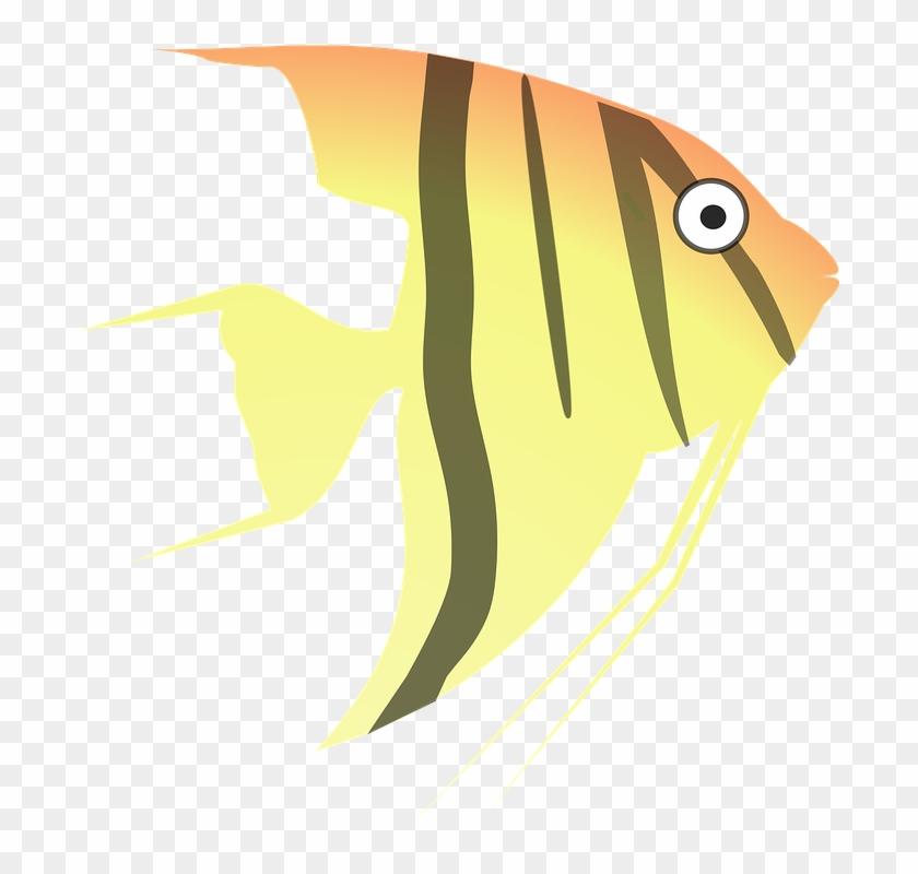 Tropical Fish Clipart 24, Buy Clip Art - Angel Fish Cartoon #400595
