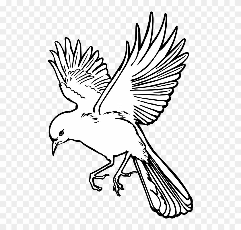 simple tree drawings 8 flying bird drawing art free transparent