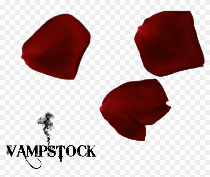Rose Petal Png 6 Vampstock By Vampstock - Love My Family Background #406564