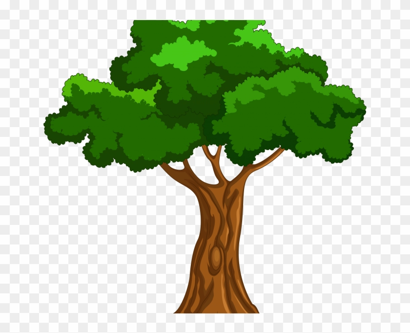 Tree Cartoon Picture Trees Clipart Clipartfest For - Big Book Of Beginner Reading Stories By Naomi Bradley #406565