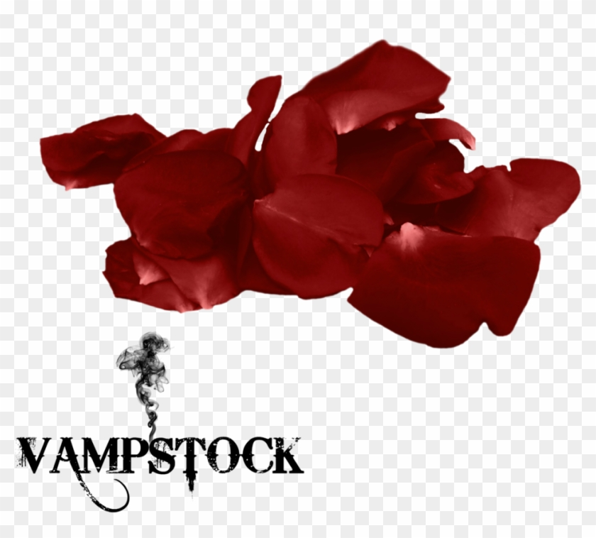 Rose Petal Png 8 Vampstock By Vampstock - Love My Family Background #406669
