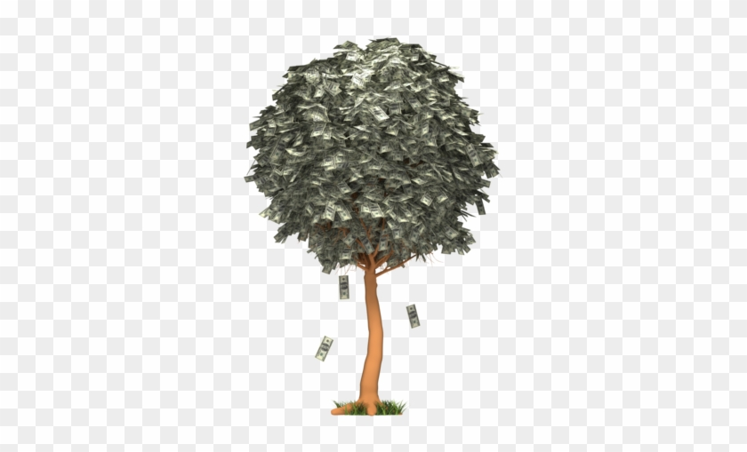 Images - Money Falling From Tree Gif #407209