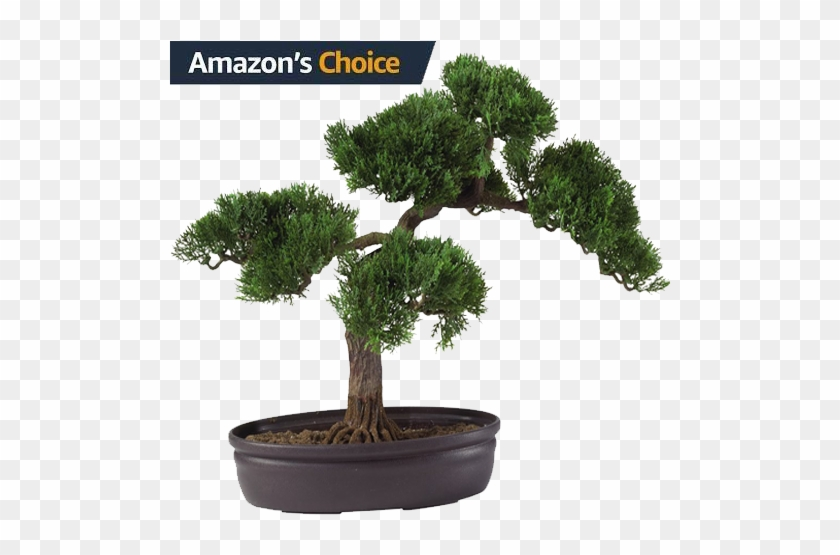 Nearly Natural Artificial Silk Plant, Cedar Bonsai - Make An Artificial Bonsai Tree #407608