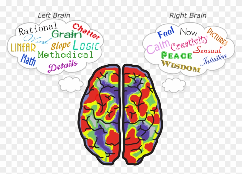 Brex Golf Putt With Both Sides Of Your Brain - Sides Of Your Brain #408121