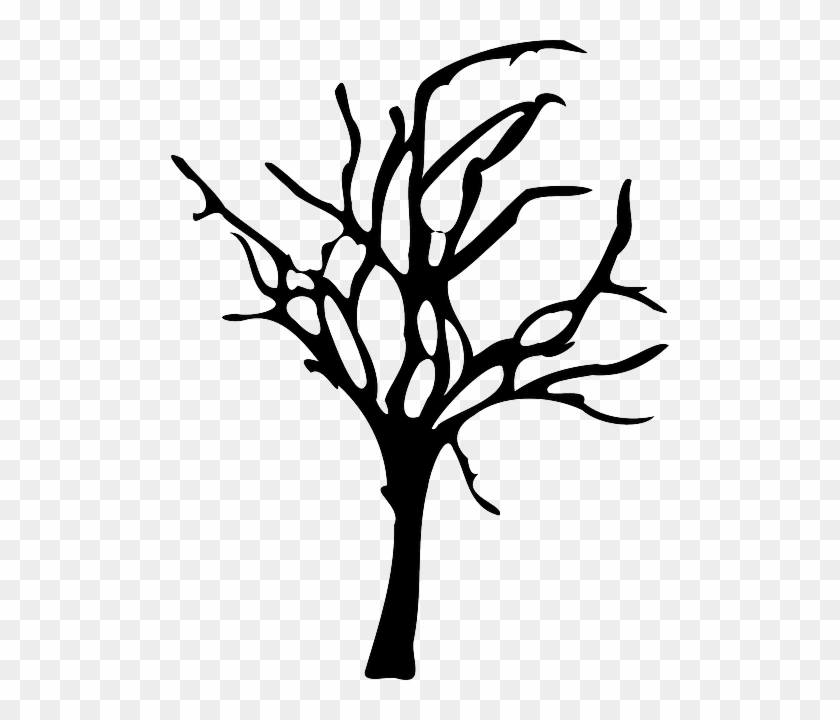Winter Forest Decline, Forest Dieback, Tree, Dead, - Spooky Tree Silhouette Png #410237
