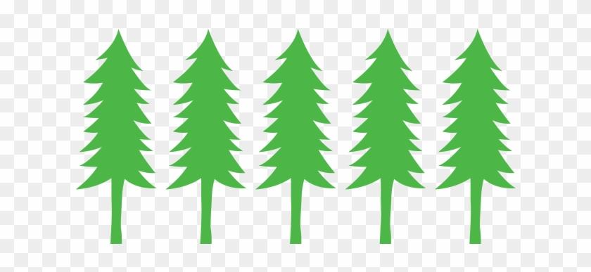 beaverton holiday u cut christmas tree farm beaverton holiday u cut tree farm