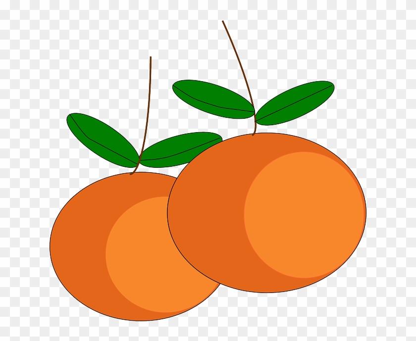 Sweet Oranges, Fruits, Citrus, Ripe, Juicy, Vitamins, - Buah Buahan Vektor #417106