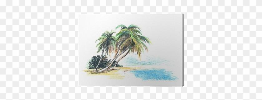 Cuadro En Lienzo Dibujo Playa Con Palmeras - Palm Trees Drawings At Beach #417651