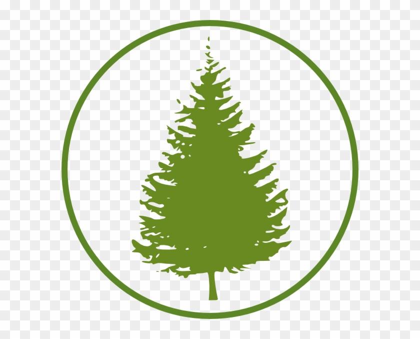 Pine Tree Silhouette #418136