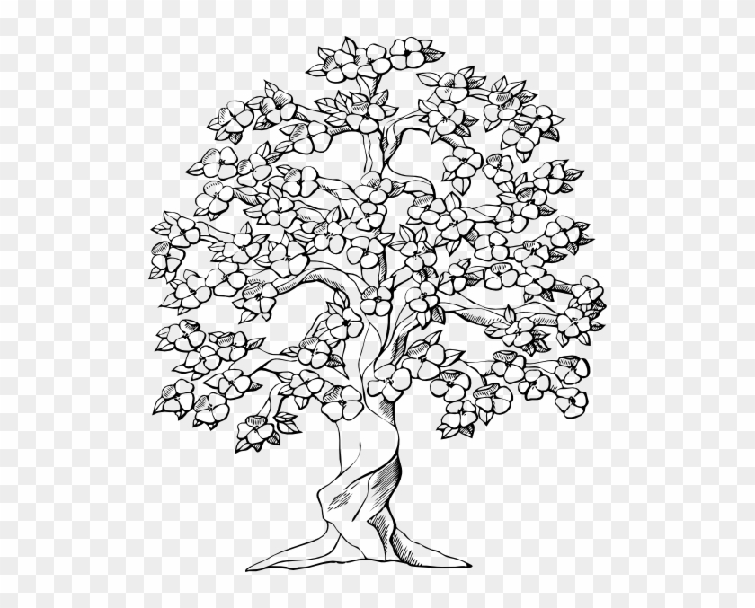 Drawn Roots Tree Illustration - Big Family Tree Drawing #418607