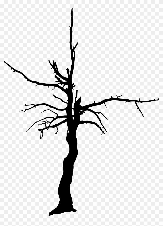 17 Dead Tree Silhouette - Dead Tree Transparent #418811