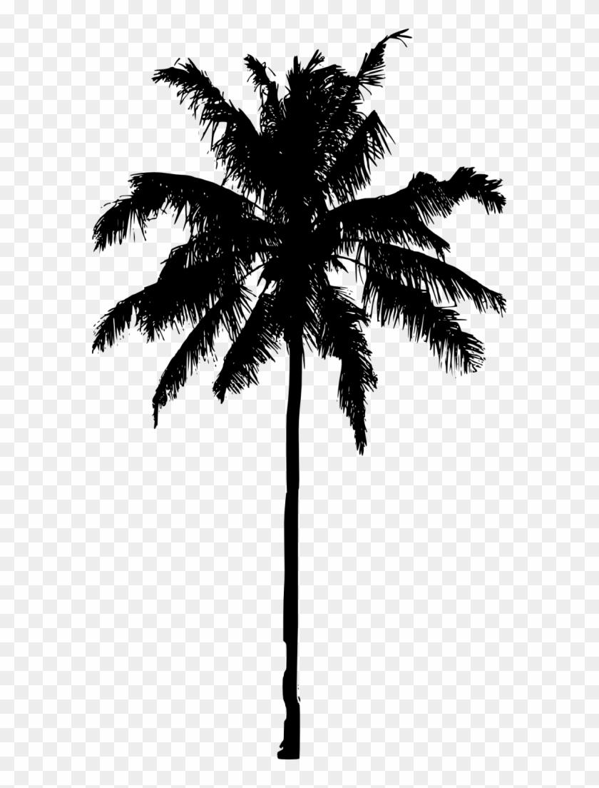 851 × 1500 Px - Transparent Palm Tree Silhouette #419416