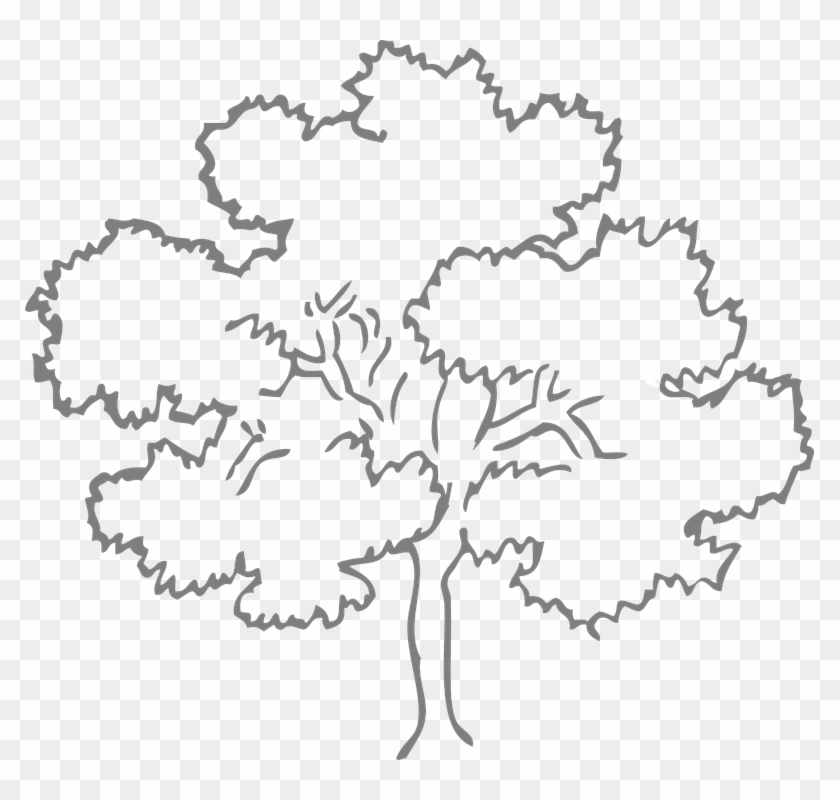 Easy Leaf Cliparts 12 Tree Clipart Black And White Free