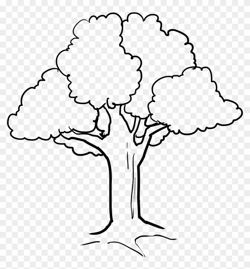Tree - Coloring Picture Of Tree #419492