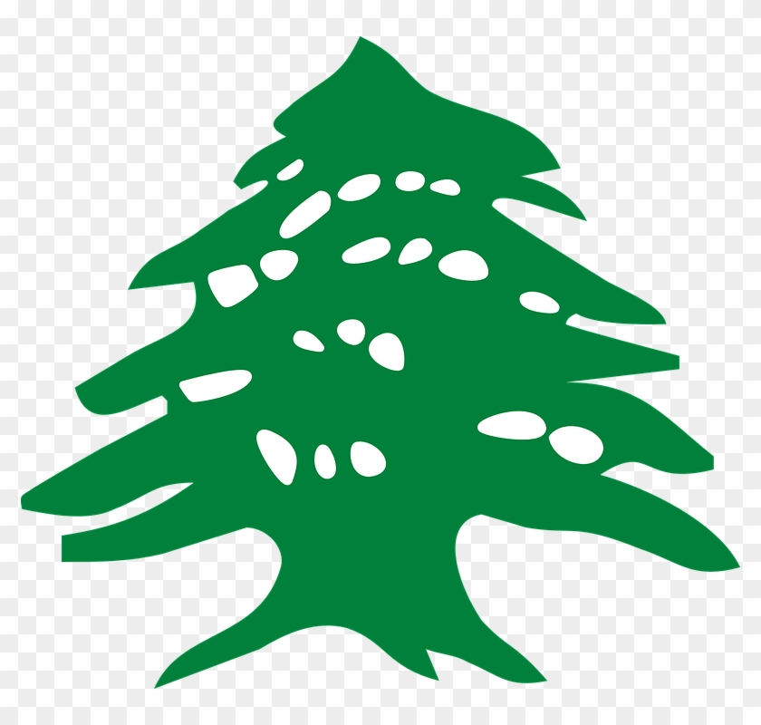 Free Vector Graphic Lebanese Cedar Tree Vector Free Transparent
