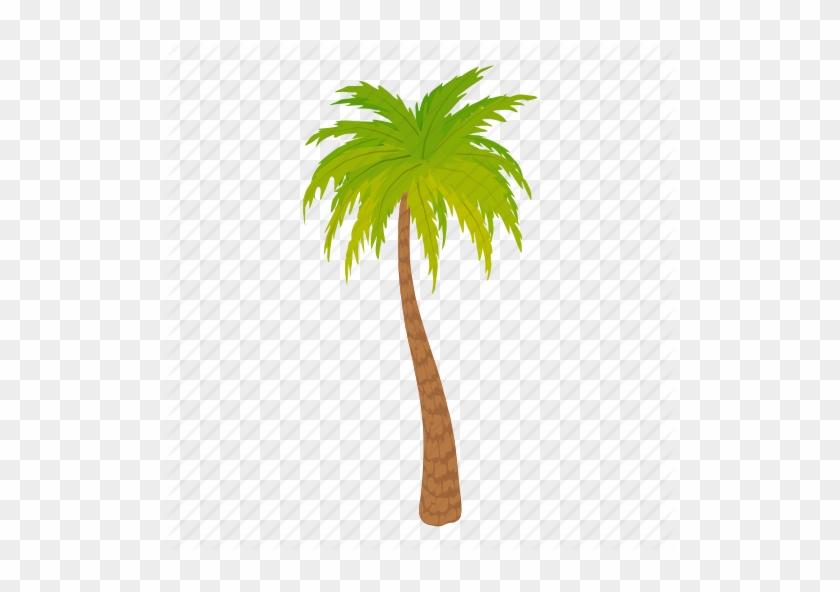 Palm Trees Cartoon Palm Tree Vector Free Transparent Png Clipart Images Download Are you searching for cartoon tree png images or vector? palm trees cartoon palm tree vector