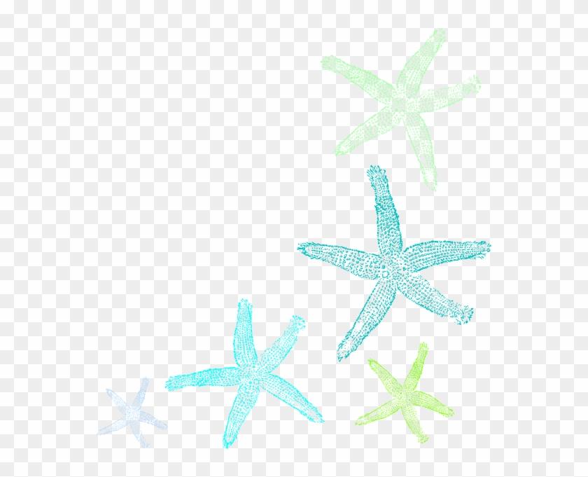 Starfish Prints Clip Art At Clker - Fish Clip Art #68964