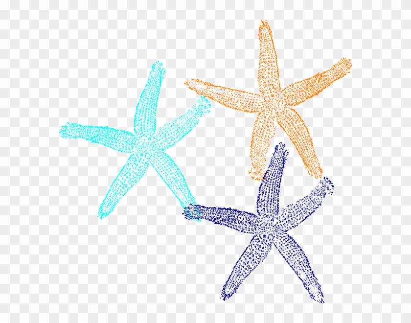 Starfish Svg Clip Arts 600 X 580 Px - Fish Clip Art #68988