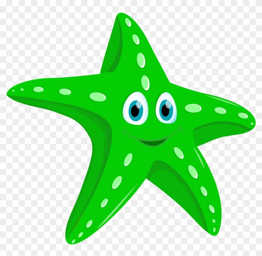 Starfish #69041