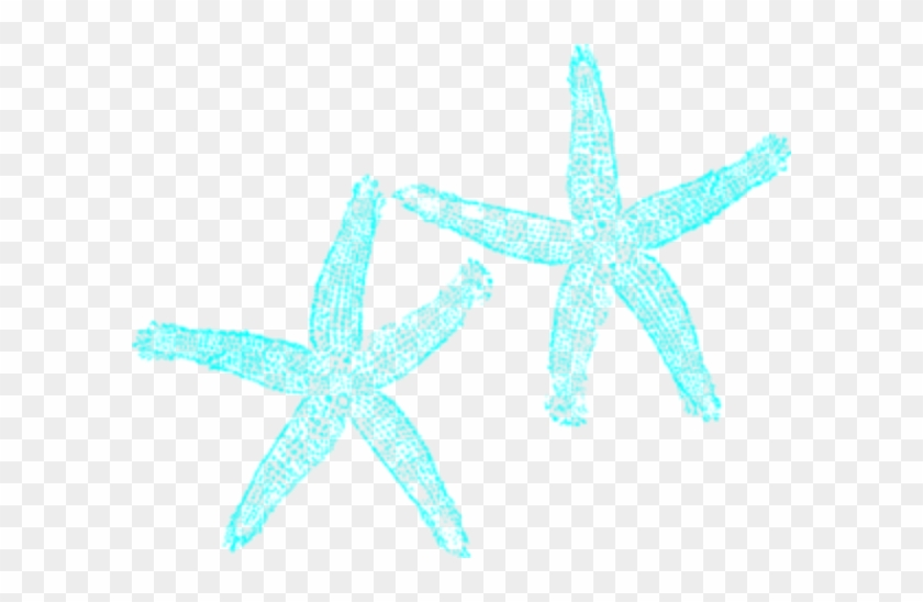 Star Fish Clip Art With No Background #69085