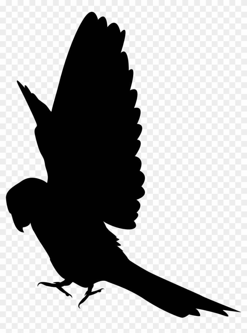 Parrot Silhouette Clip Art Png Imageu200b Gallery Yopriceville - Parrot Silhouette Clip Art #69149