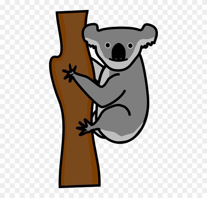 Koala Clip Art At Clker - Png Clipart Of Koala #69350