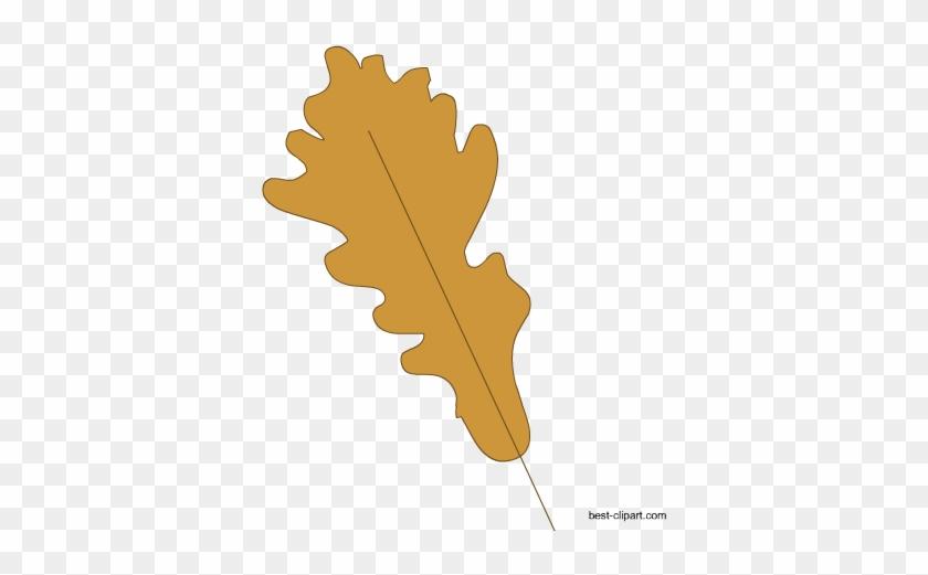 Fall Leaf Clip Art Free - Autumn Leaves #70409