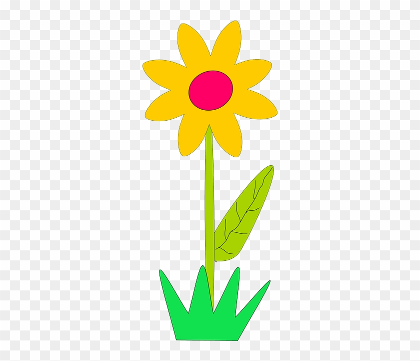 Yellow Plants Sun Flower Flowers Cartoon Border Spring