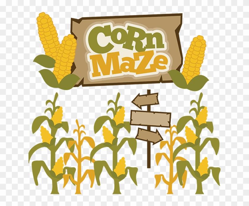 Corn Freern Clipart The Cliparts - Corn Maze #76113
