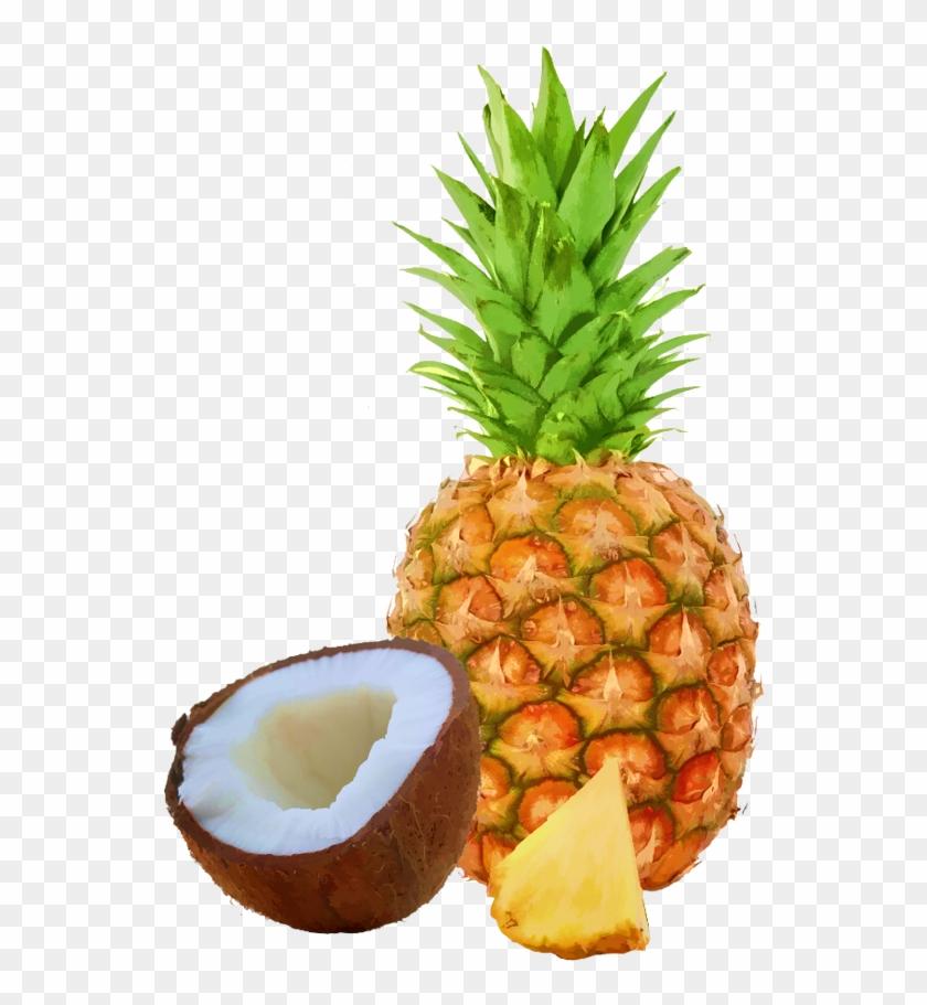 Pineapple Coconut Bar Case - Stainless Steel Fruit Pineapple Corer Slicers #421045