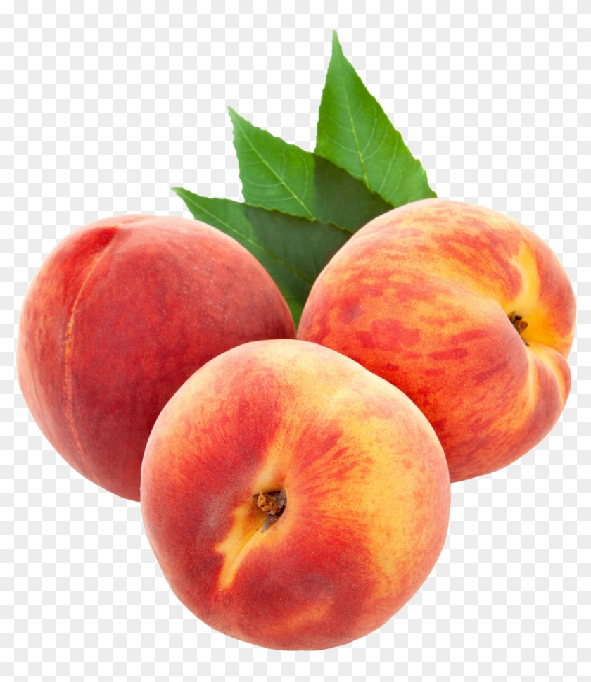 Peach Clipart Single Fruit - Peaches Png - Free Transparent PNG ...