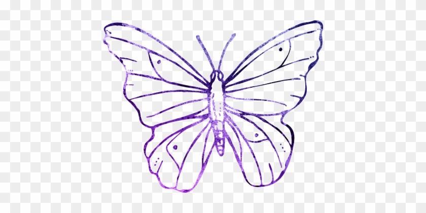 Butterfly Purple Outline Clipart Cute Flyi - Transparent Background Butterfly Flower Line Art #421865