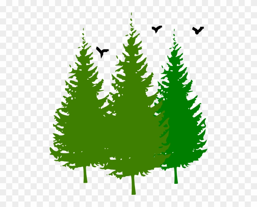 Pine Tree Clipart Tress Pine Tree Clipart Free Free Transparent