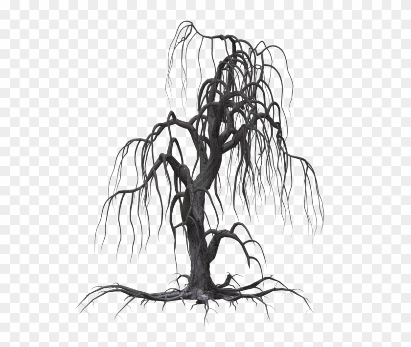 Creepy Tree 19 By Wolverine041269 On Clipart Library - Creepy Tree Drawing #422282