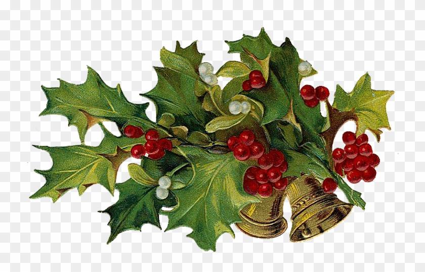 Christmas Tree Clipart Clip Art Christmas Holiday Decor - Christmas Holly 5'x7'area Rug #426183